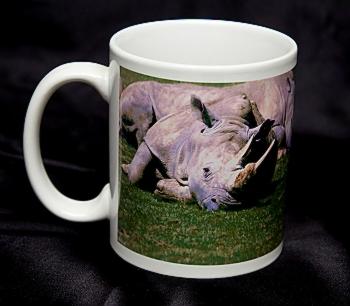 Photo Mug resized.jpg